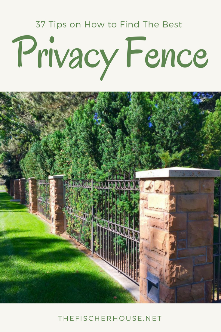 Green Privacy Screen Design