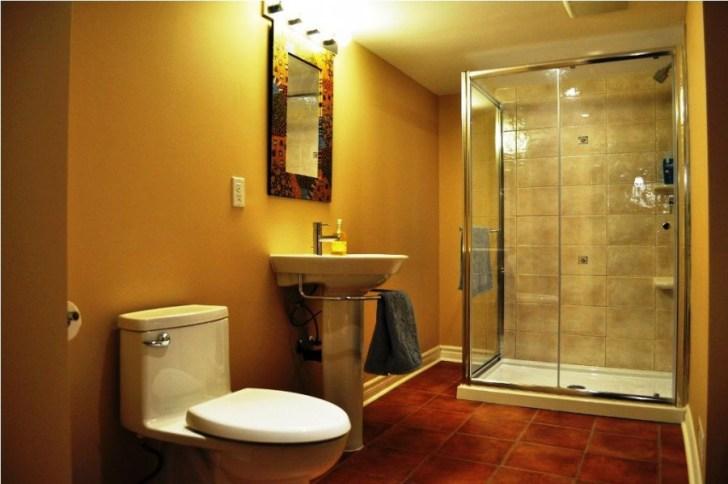 basement_bathroom_ceiling_ideas