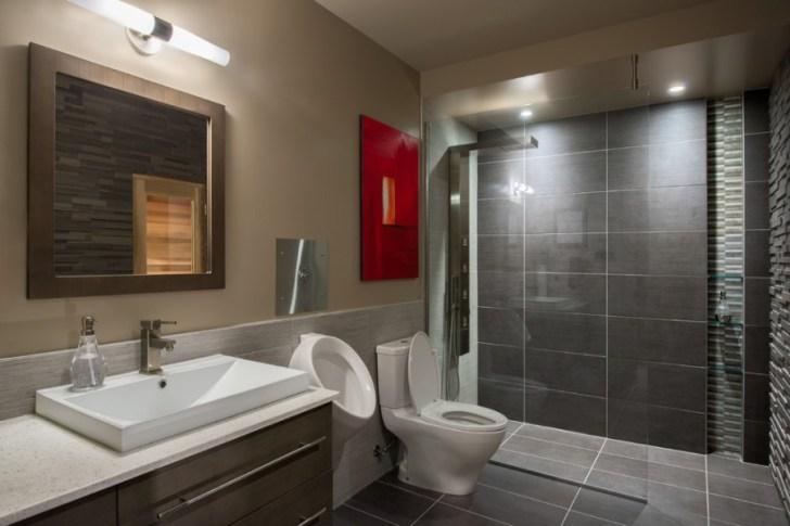 basement_bathroom_shower_ideas
