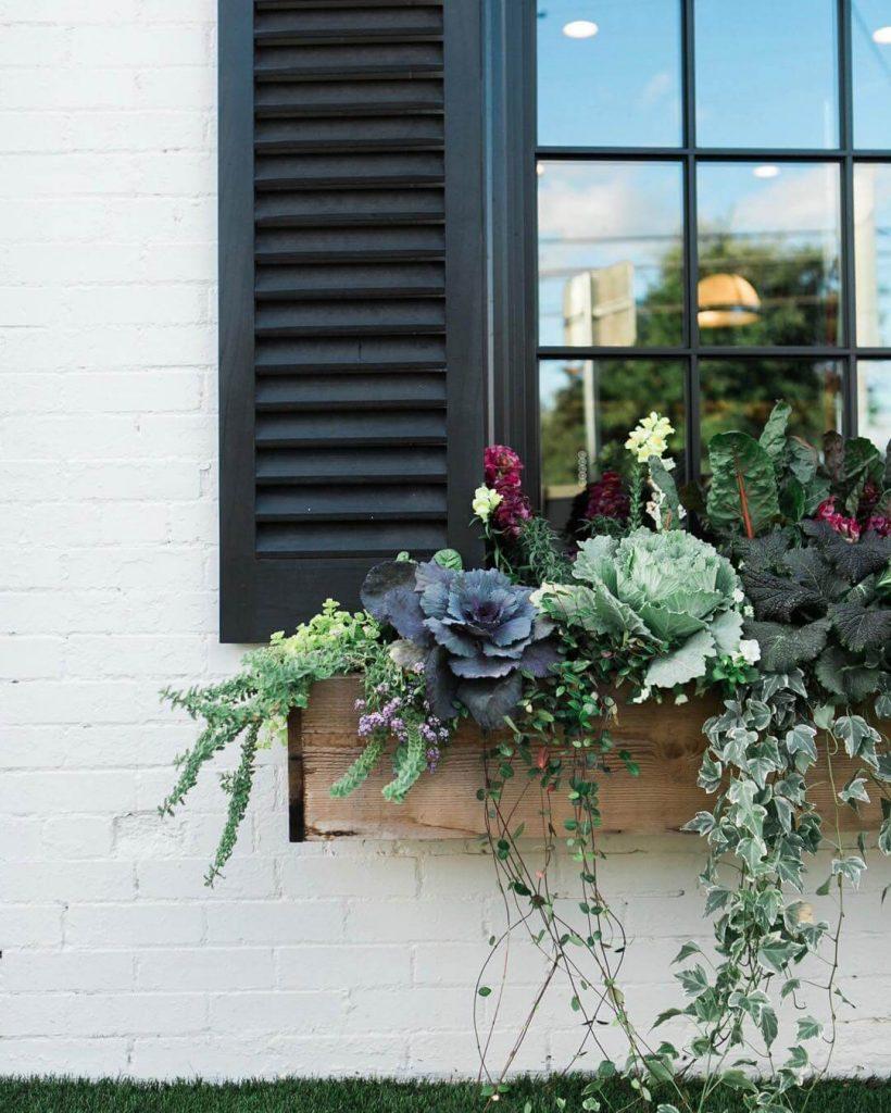 box window treatment ideas