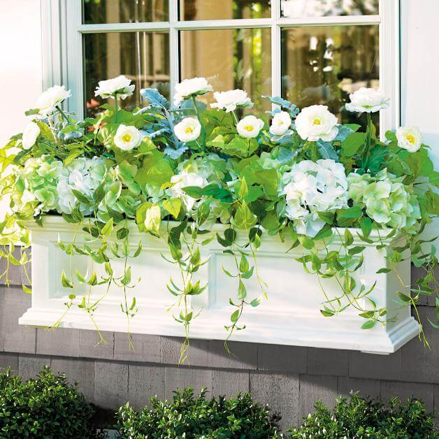 window box decorating ideas