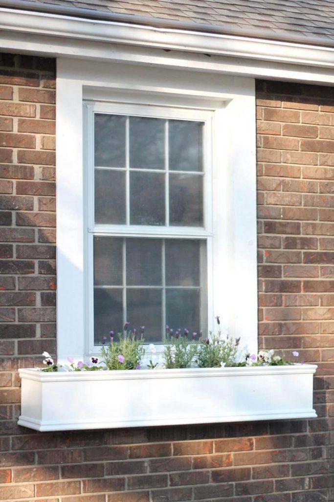 window box ideas for spring