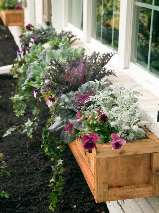 window box ideas full sun