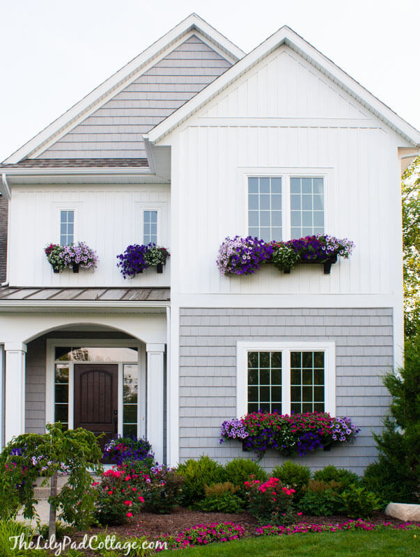 window box ideas summer