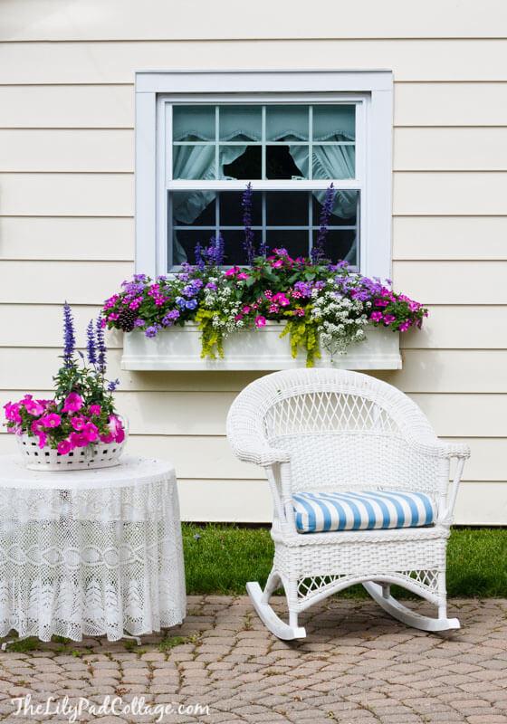 window box planting ideas