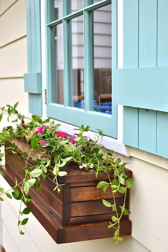 window boxes ideas tips
