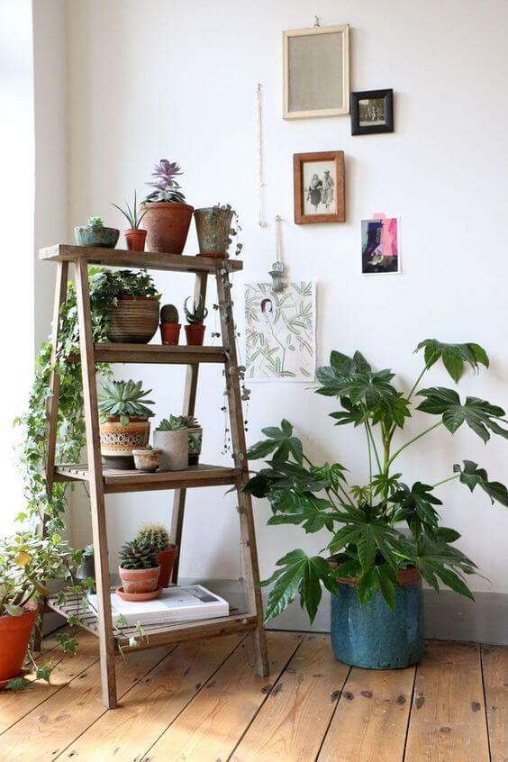 fabulous indoor garden ideas