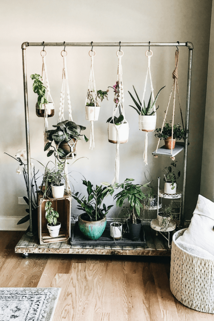indoor garden gift ideas
