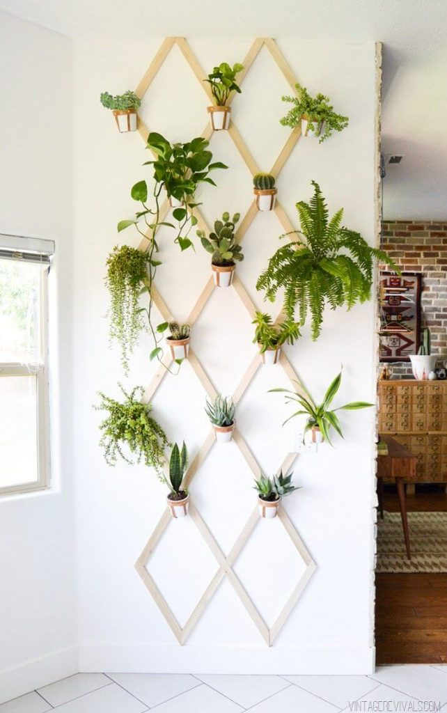 indoor garden ideas images