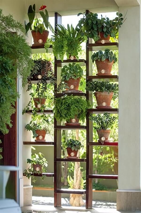 indoor garden wall ideas