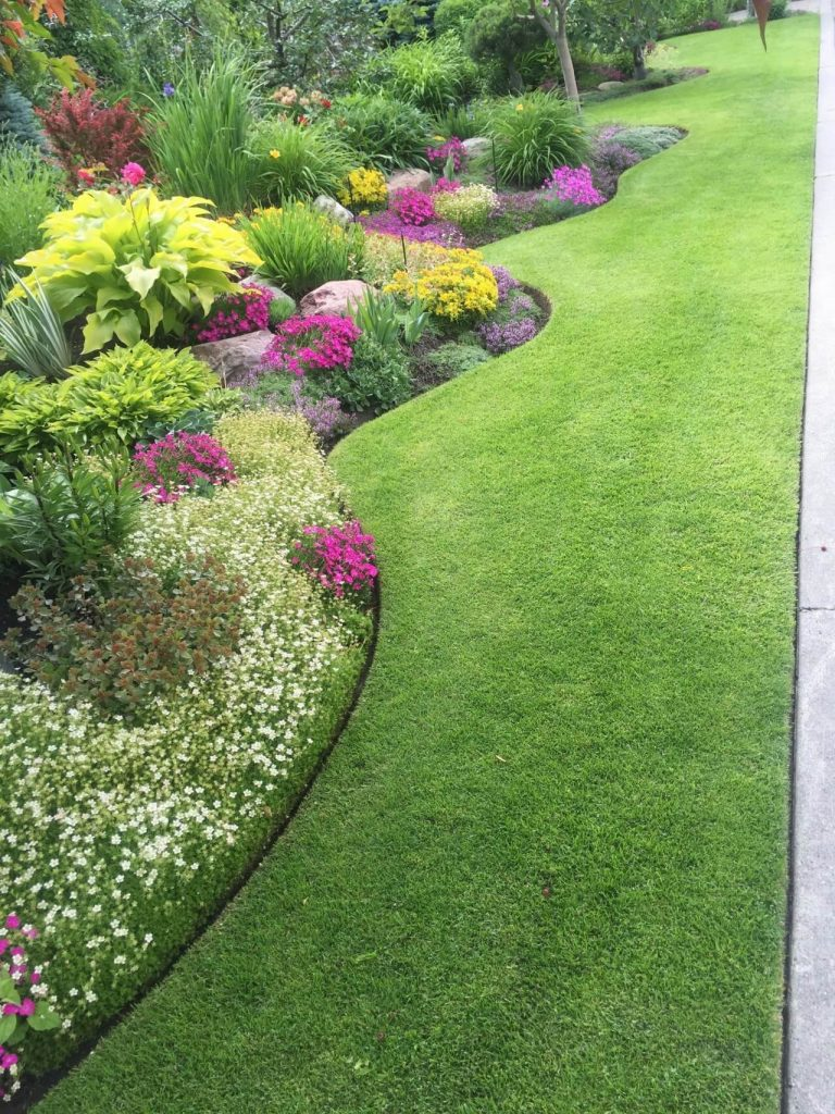 modern lawn edging ideas