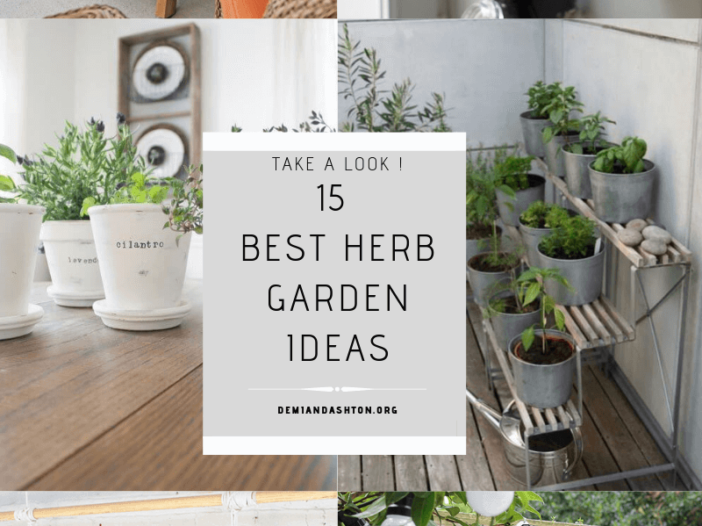 Best Herb Garden Ideas