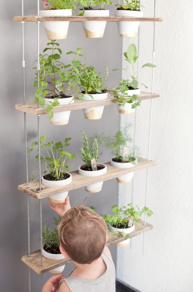diy hanging planters indoor