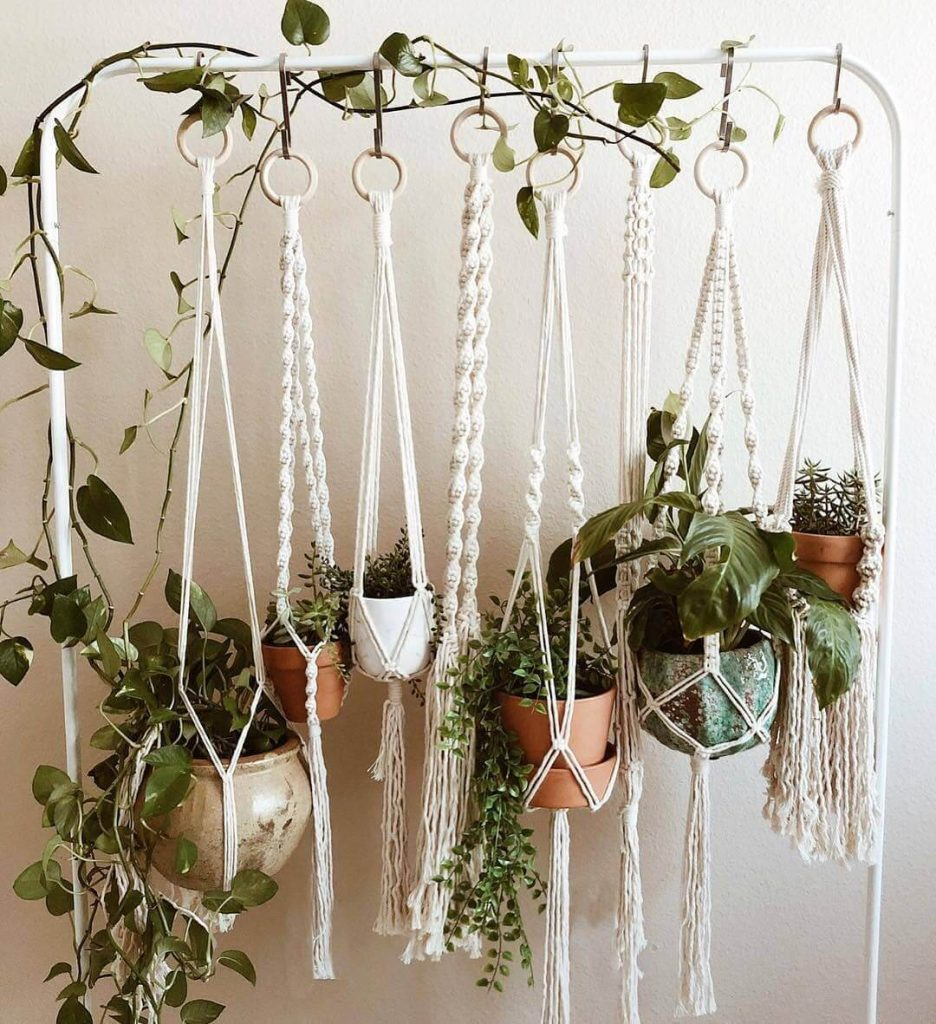 hanging planters hooks
