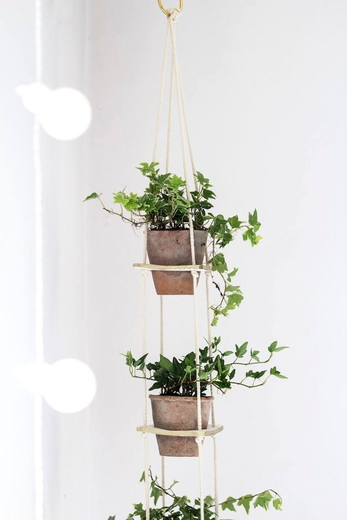 hanging planters indoor diy