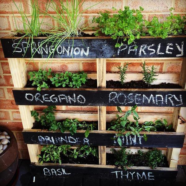 herb garden box diy
