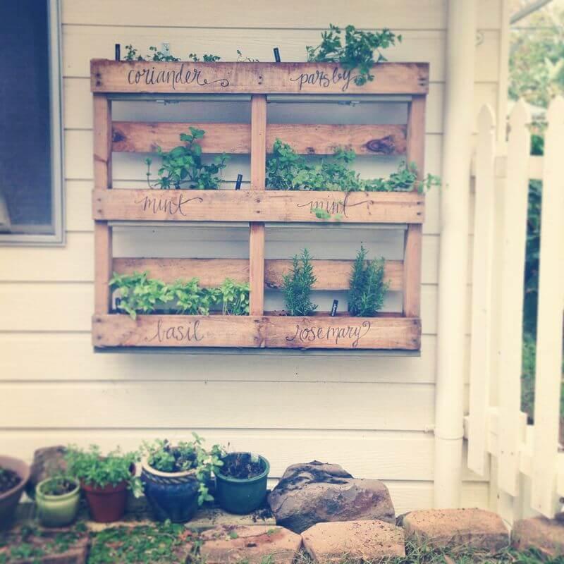 herb garden diy outdoor