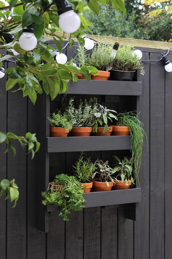 herb garden ideas for patio