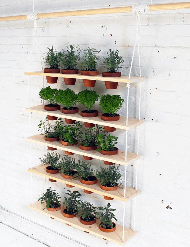 herb garden ideas indoor