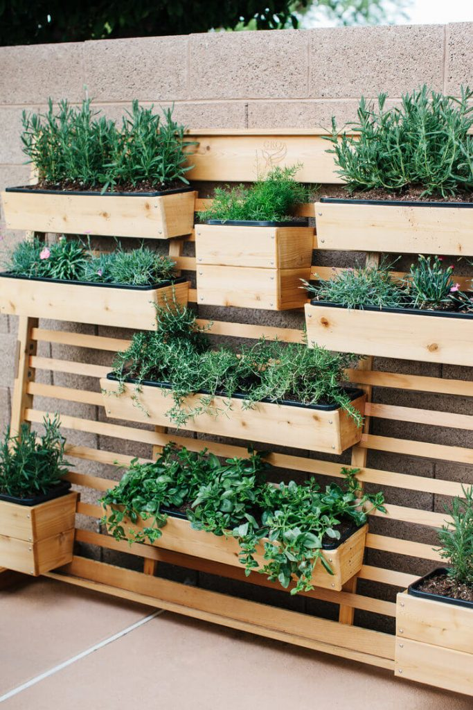 herb garden ideas pinterest