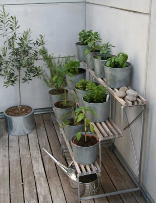 herb garden ideas pots