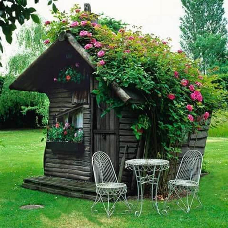rustic she shed ideas