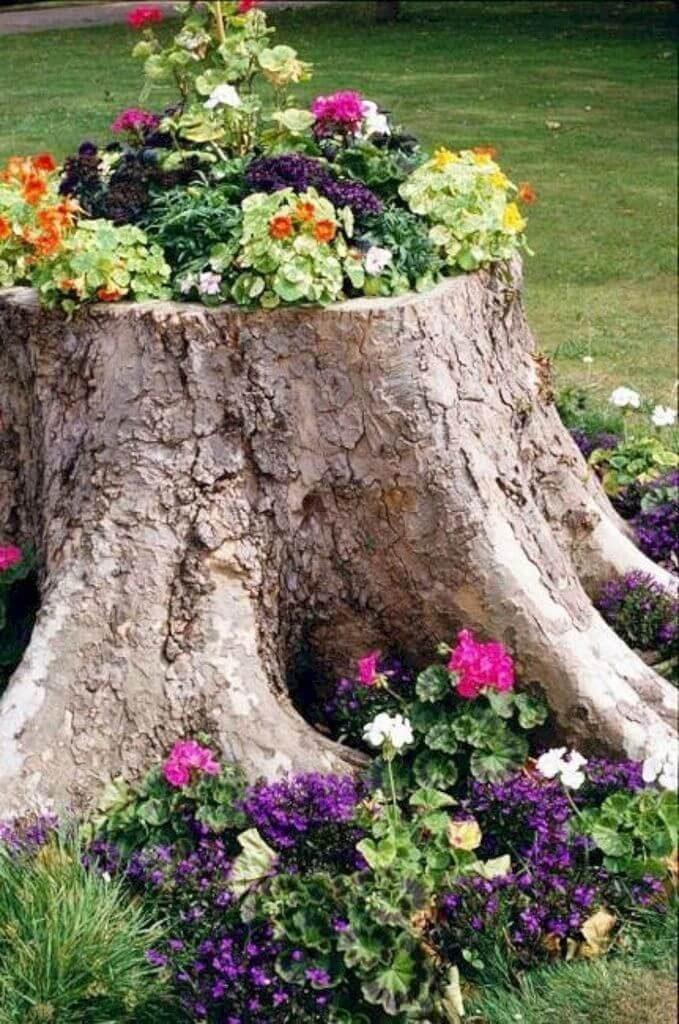 short tree stump ideas