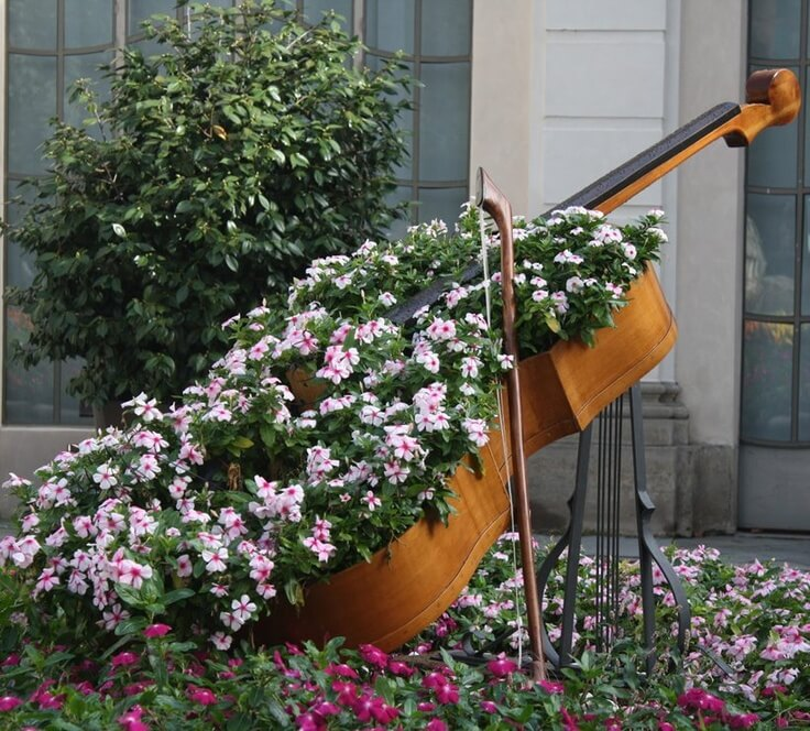 unique flower bed ideas