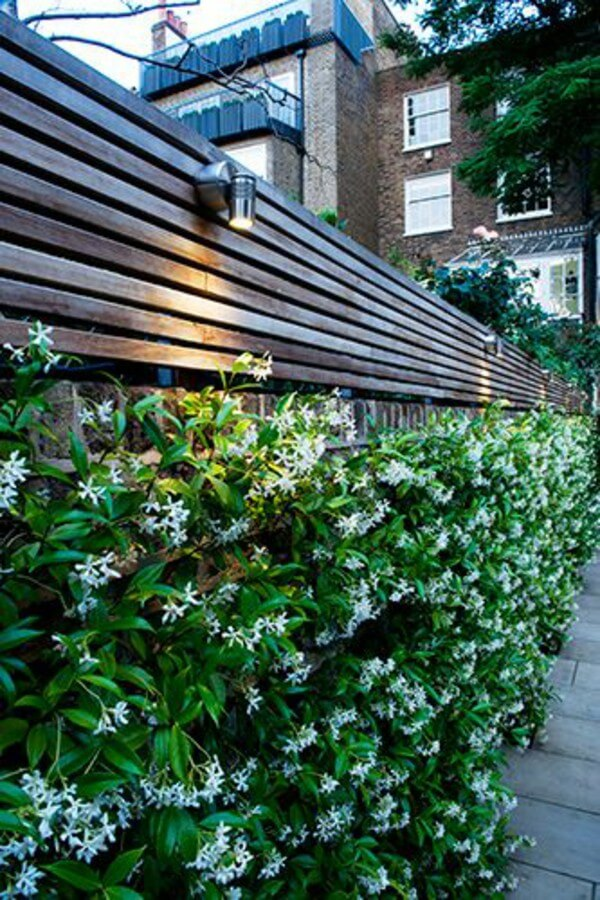 wooden fence ideas garden