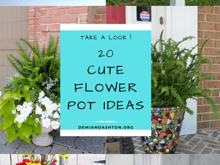 Cute Flower Pot Ideas