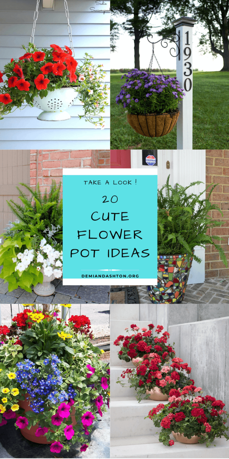 Cute Flower Pot Ideas