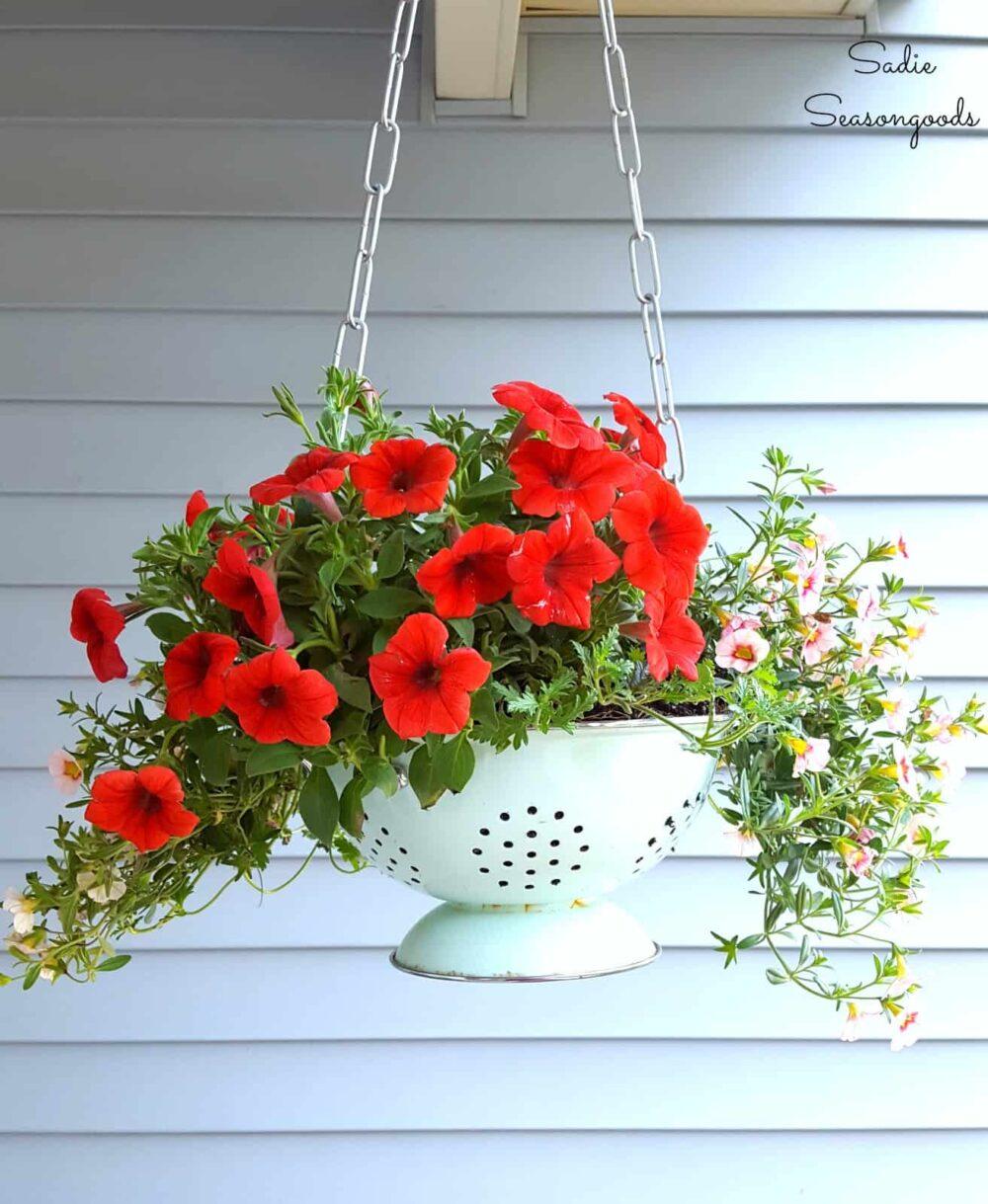 creative flower pot ideas