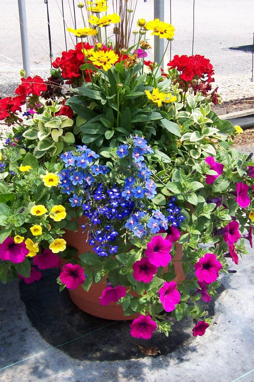 garden flower pot ideas