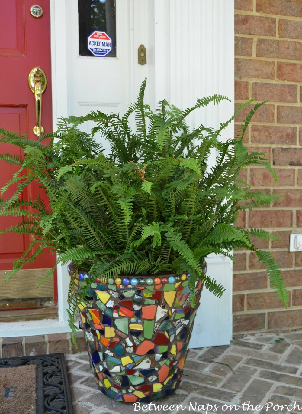 painted flower pot ideas