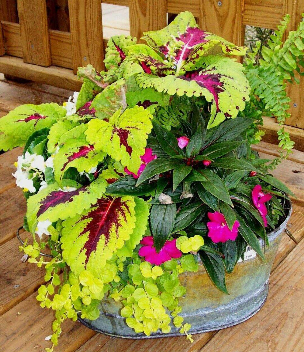 pinterest flower pot ideas