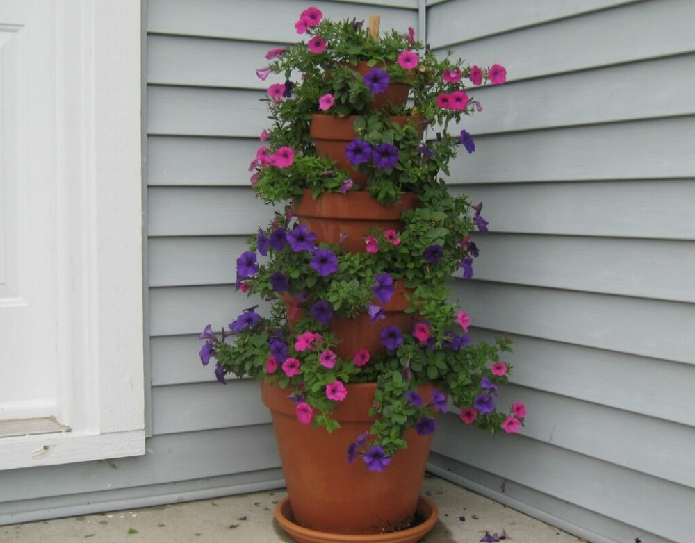 20 Cute Flower Pot Ideas To Make Your Garden Wonderful