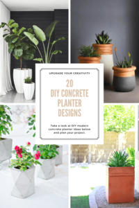 DIY Concrete Planter Designs