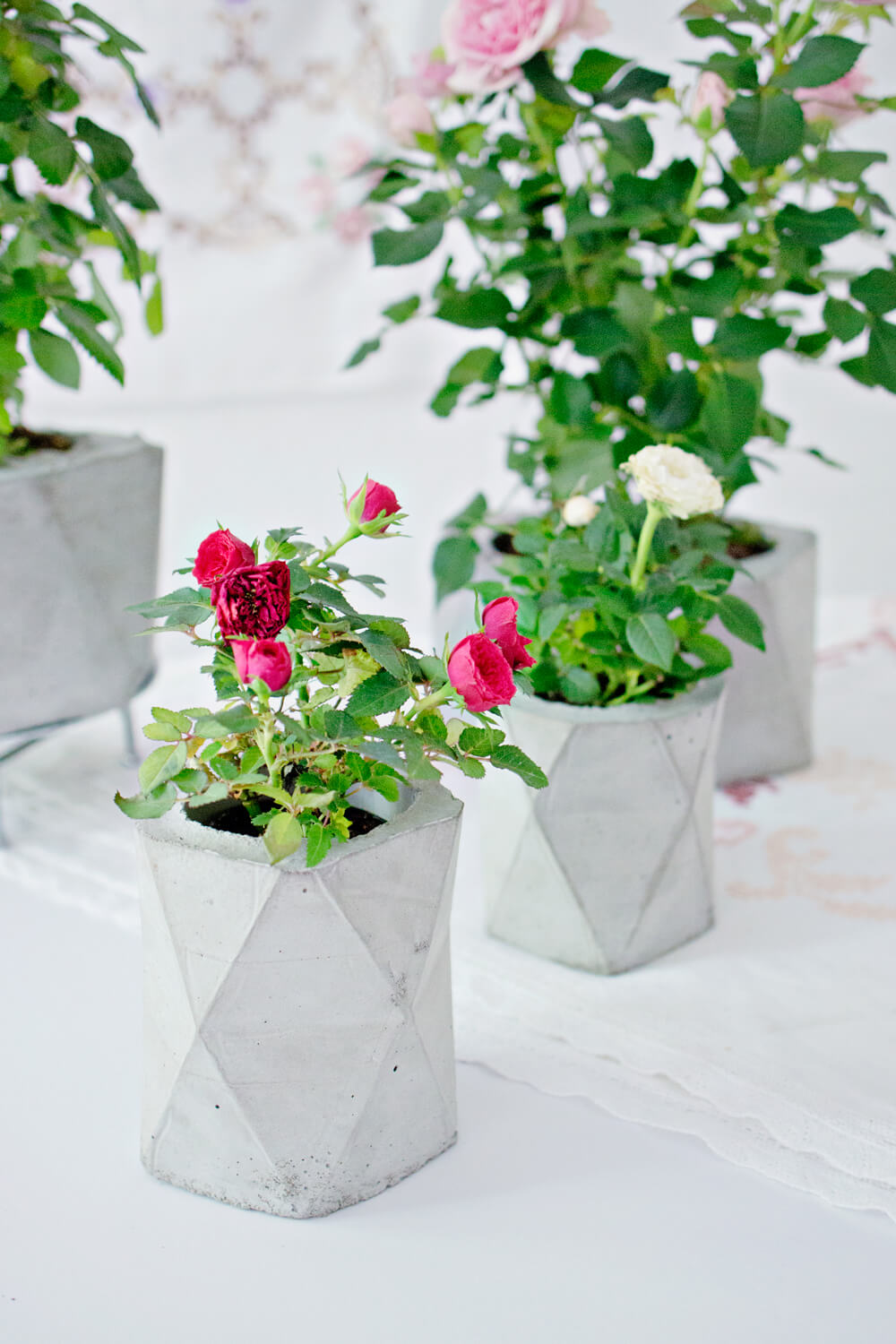 diy concrete geometric planter