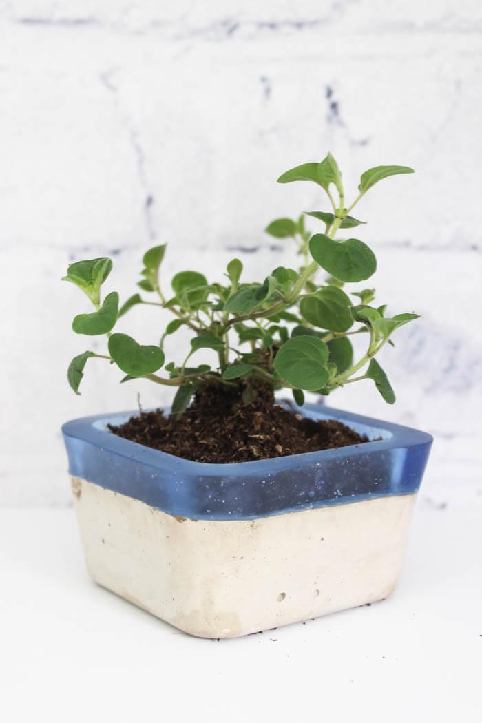 diy concrete hand planters & bowls