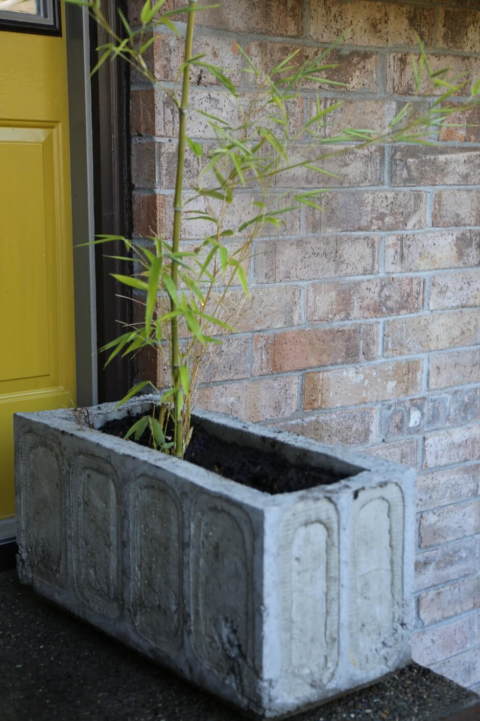 diy lightweight cement concrete planter