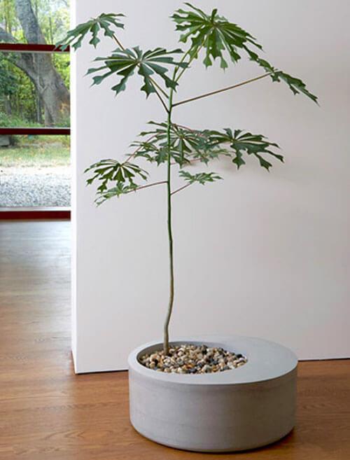 diy lightweight concrete planter