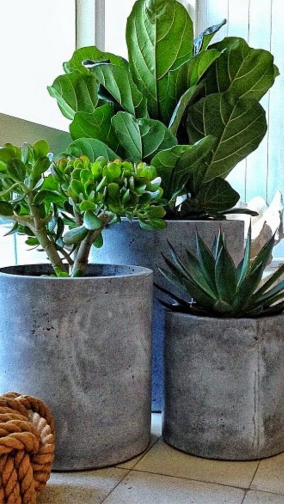 diy square concrete planter