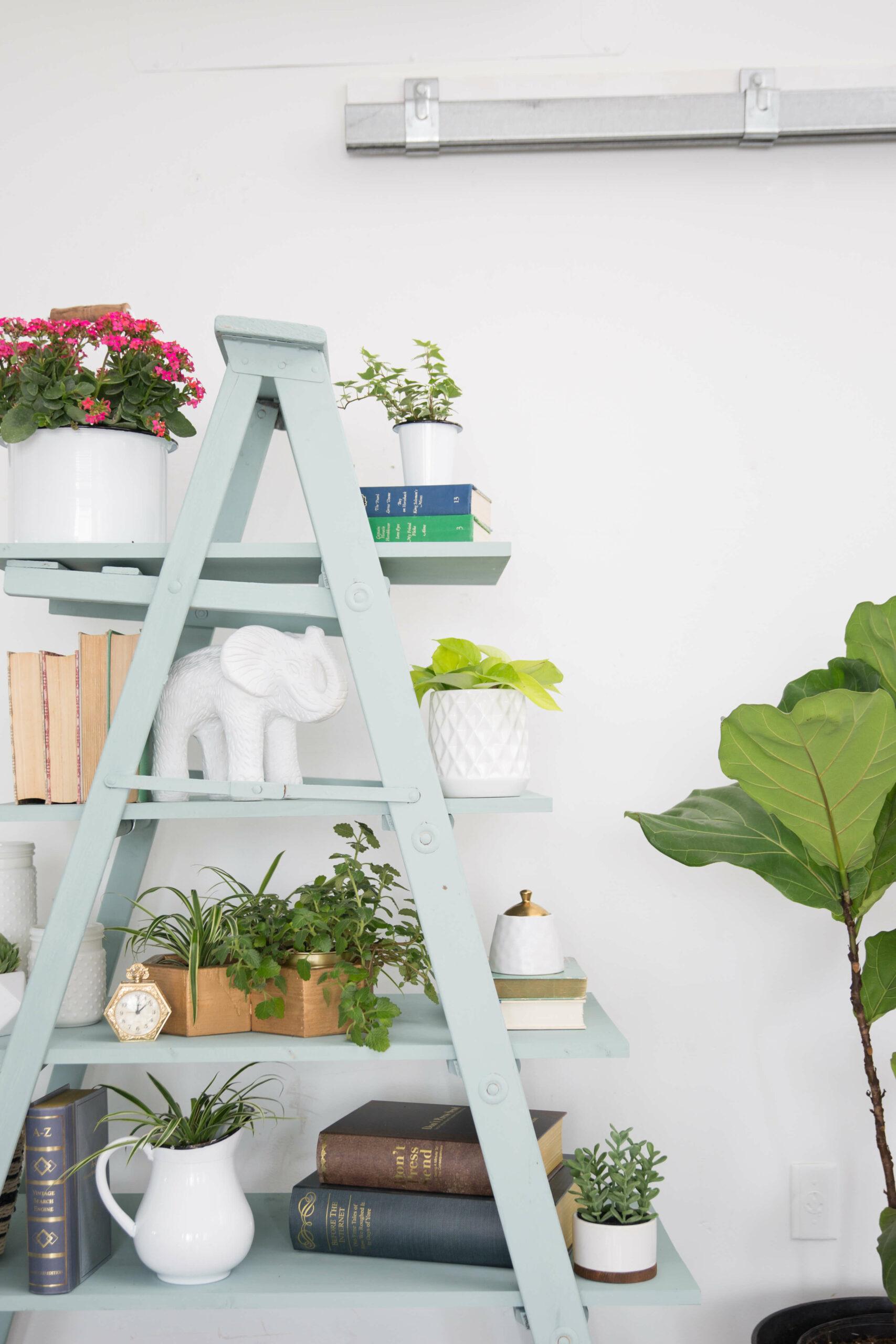 easy diy ladder shelf