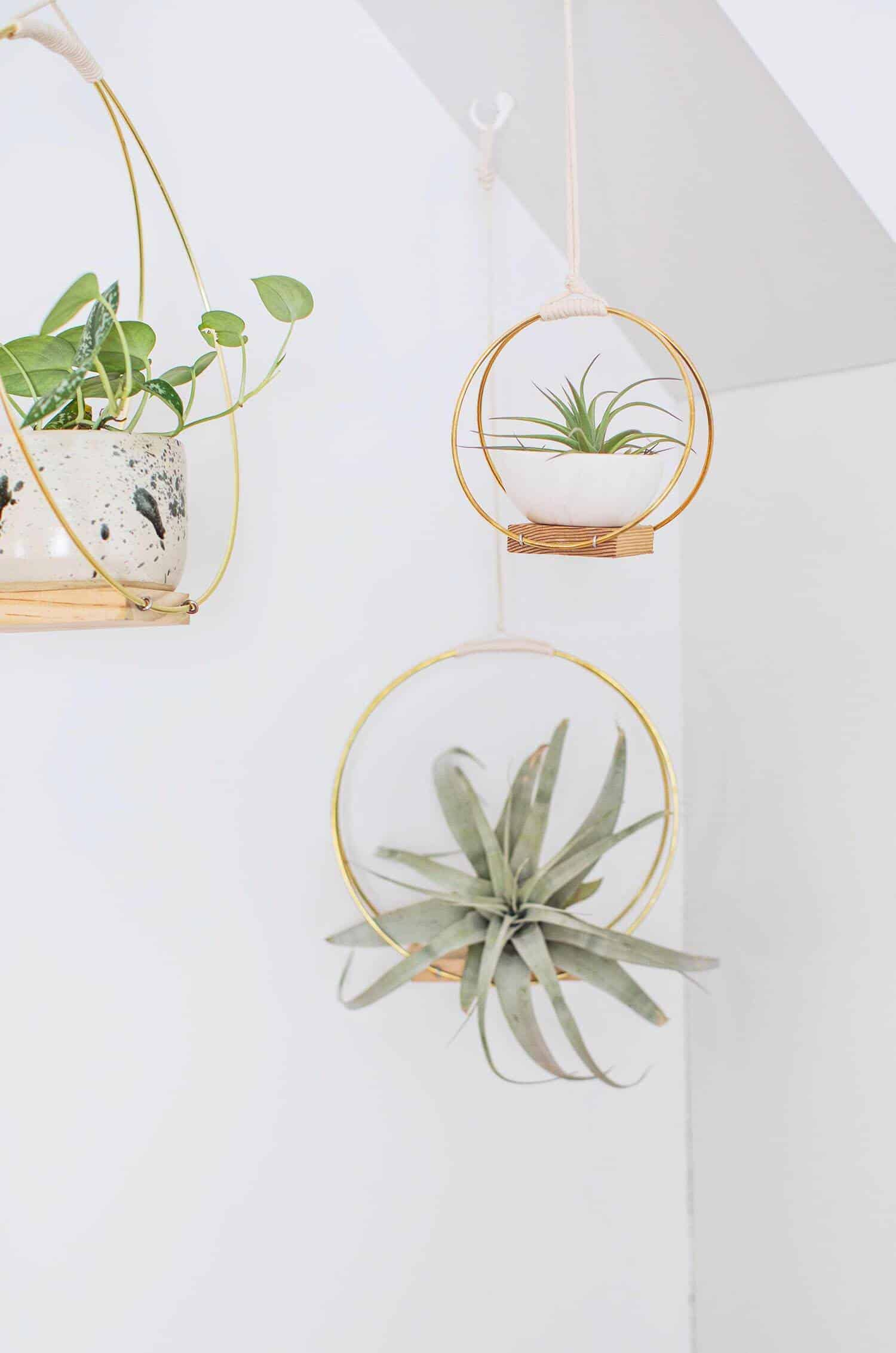 DIY Brass Ring Hanging Planter