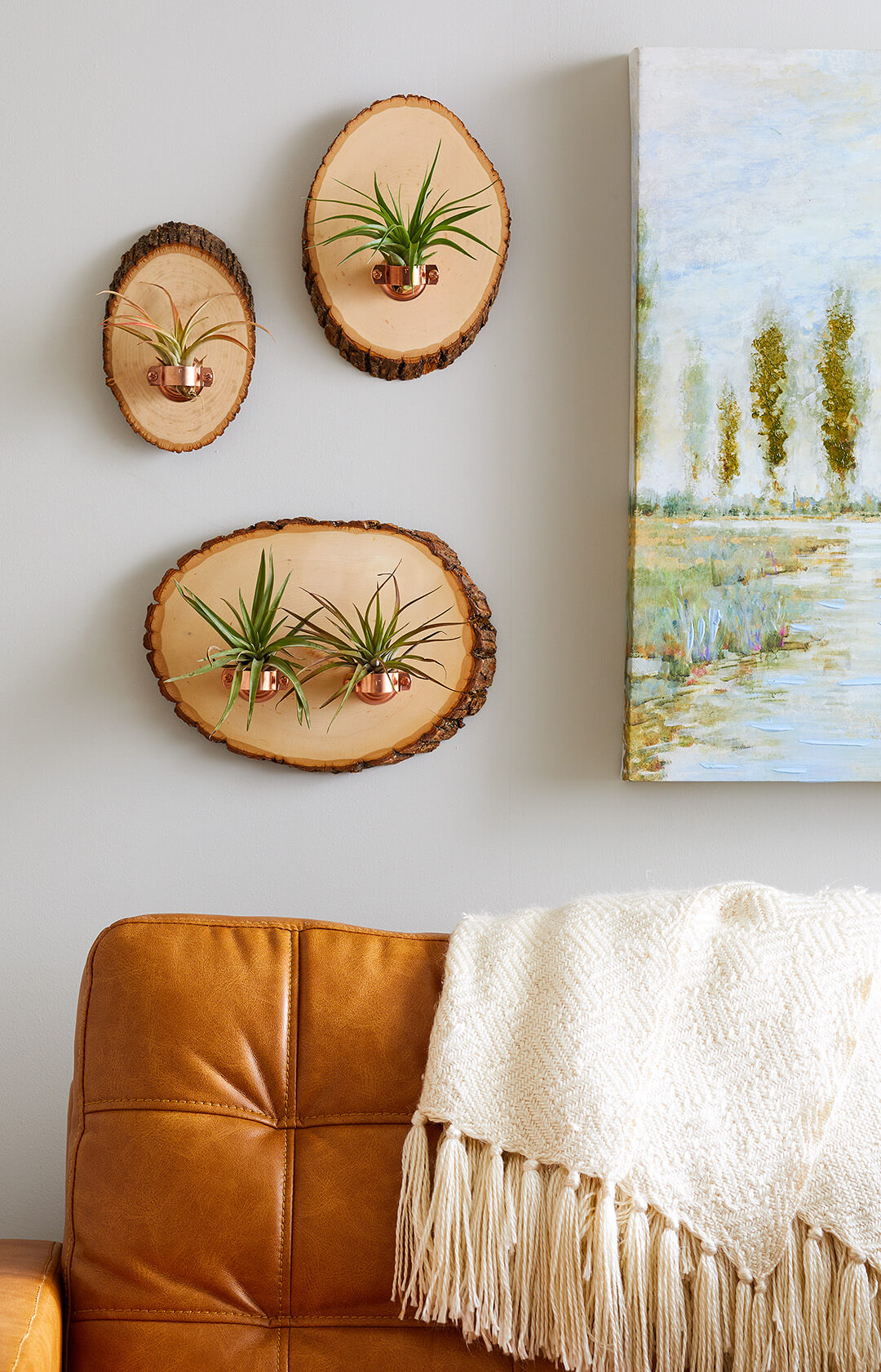 DIY Hanging Air Plant Holders