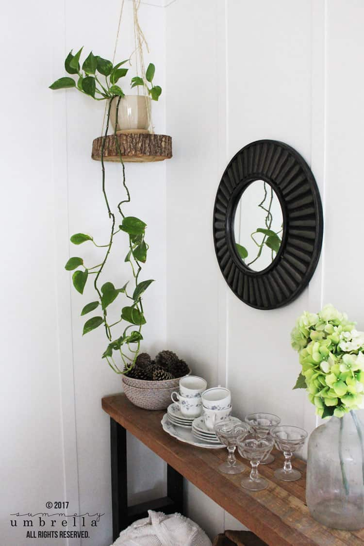 Easy DIY Hanging Planter Using a Wood