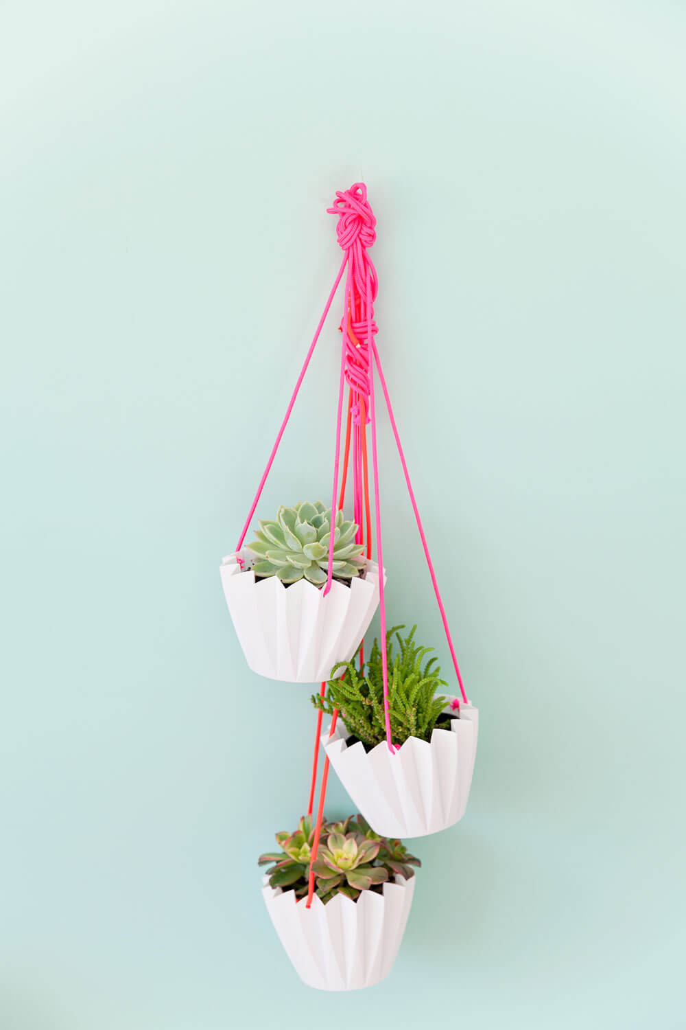cheap hanging planter DIY